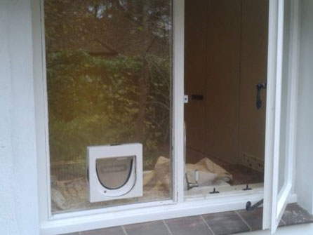 Cat Flap Fitting Service In Basingstoke Newbury Hampshire